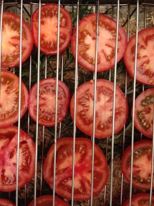 smoking tomatoes1